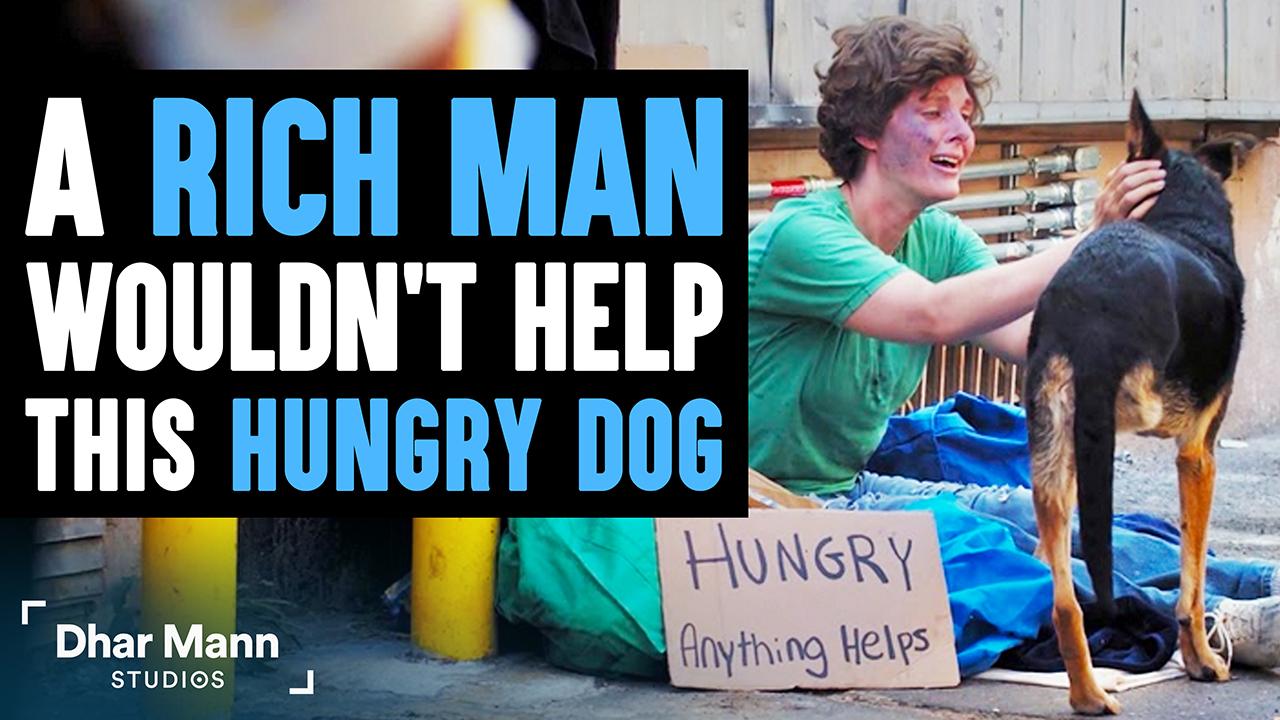 Rich Man Won't Help Hungry Dog, Then A Homeless Woman Teaches Him A Lesson